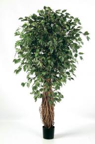 Искусственные растения: Фикус лиана де люкс