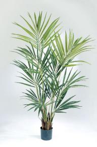 Искусственные растения: Пальма Кентия (Ховея)
