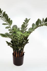 Искусственные растения: Замиокулкас куст