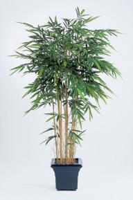Искусственные растения: Бамбук новый натуральный