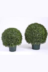Искусственные растения: Туя шар
