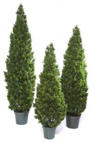 Искусственные растения: Туя элит
