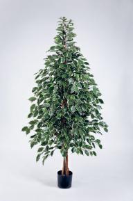 Искусственные растения: Фикус Бенджамина пестролистный