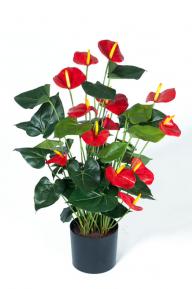 Искусственные растения: Антуриум Де Люкс