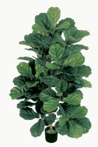 Искусственные растения: Фикус Лирата