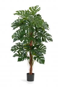 Искусственные растения: Монстера