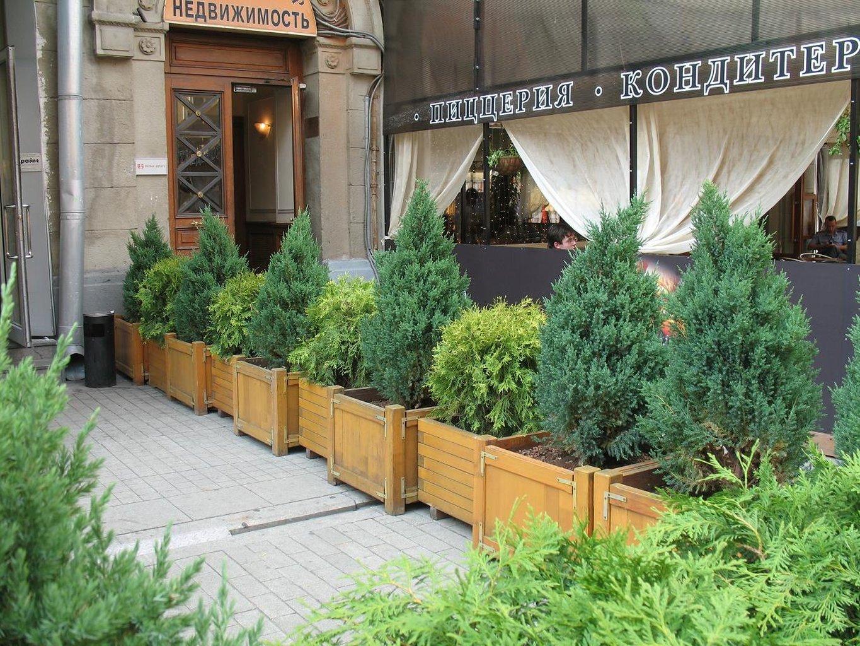 дизайн ландшафт ресторана фото ситуация происходит двумя